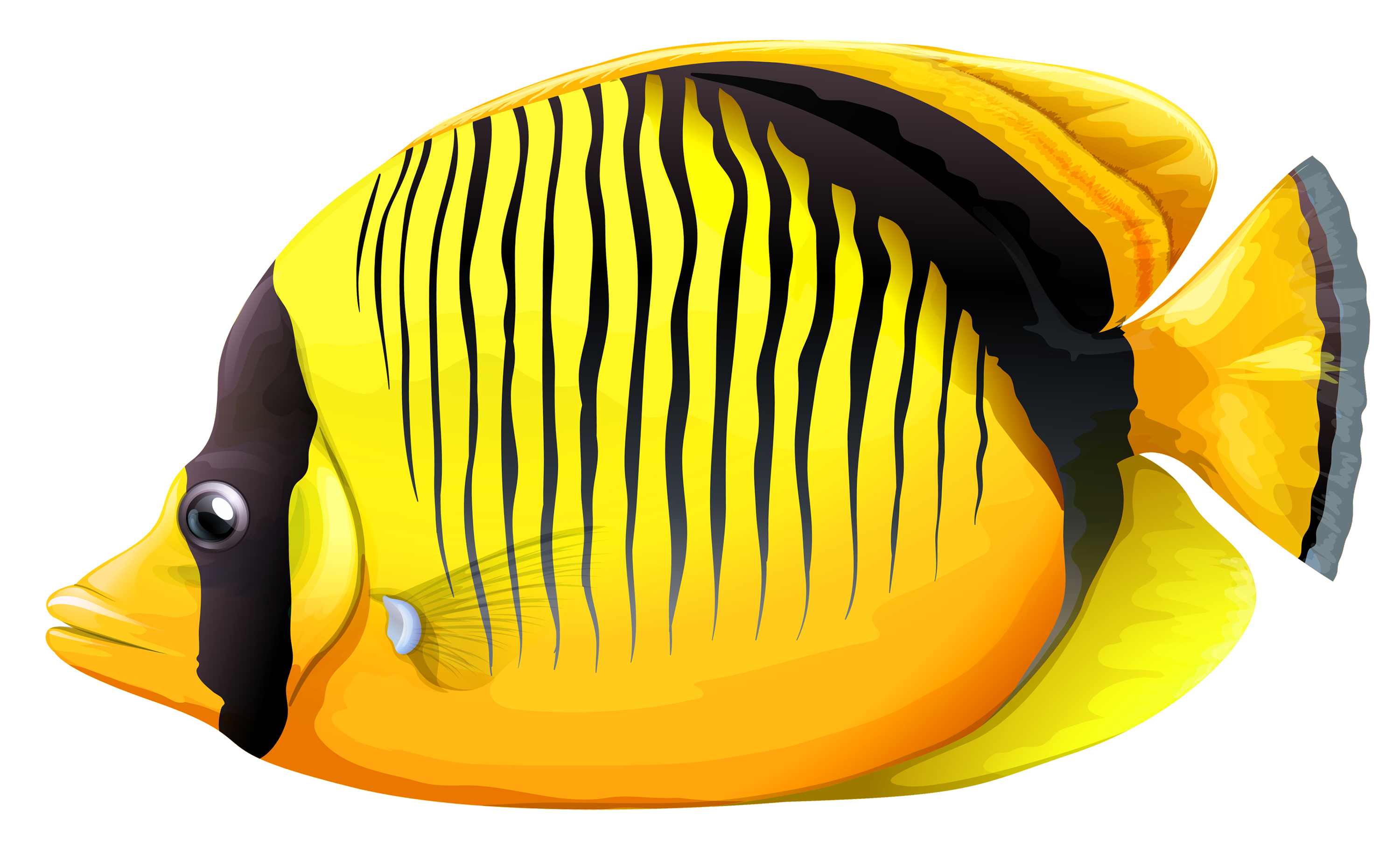 Yellow butterfly png best. Fish clipart creepy