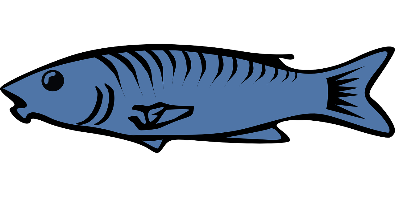 Salmon clip art blue. Clipart fish cod