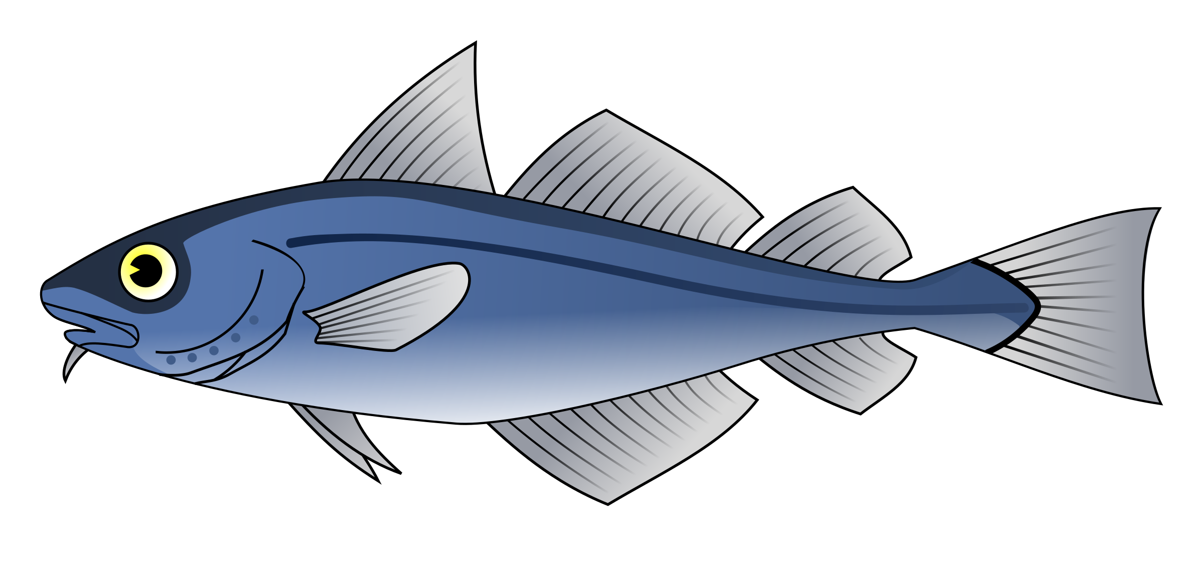 Clipart fish cod. Codfish big image png