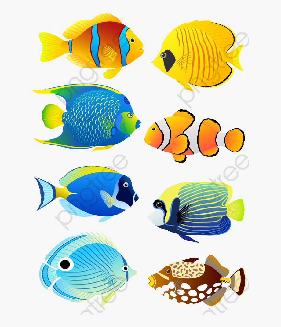 Tropical illustration . Clipart fish coral reef fish