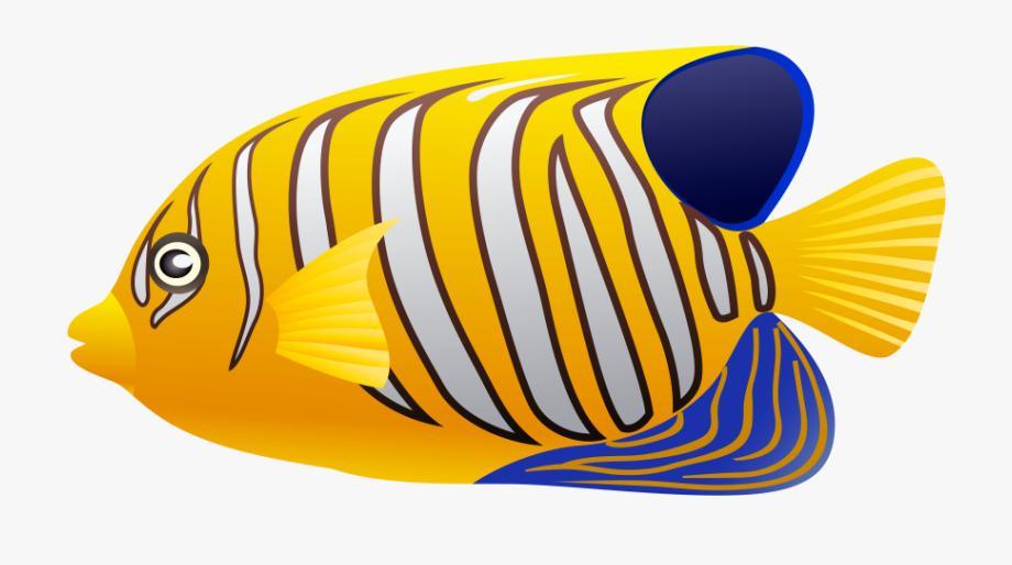 Clip art . Fish clipart coral reef fish