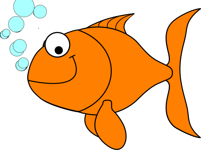 Fish clipart goldfish. Gold bclipart galleries crackers