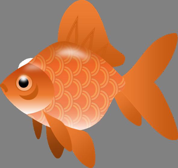 The top best blogs. Fish clipart goldfish