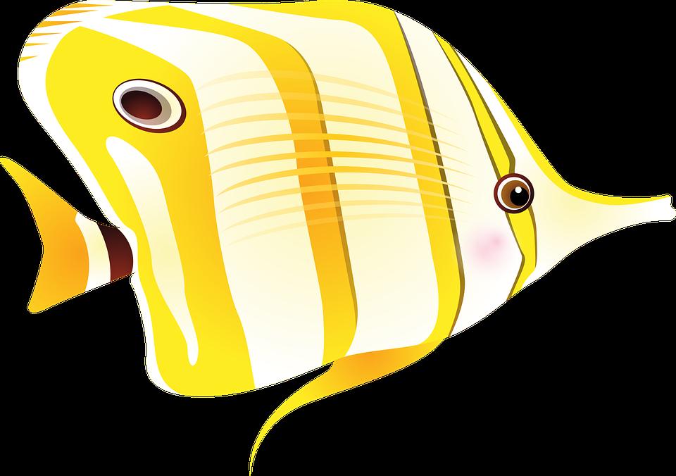 clipart fish creepy