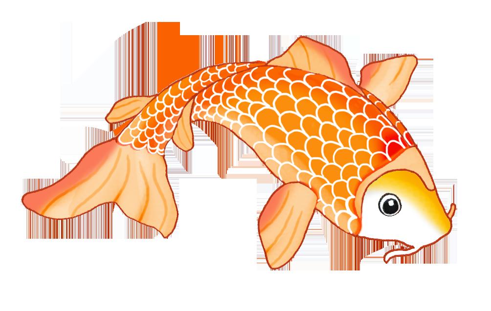 goldfish clipart colorful fish