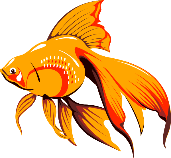 With long fins clip. Goldfish clipart mascot