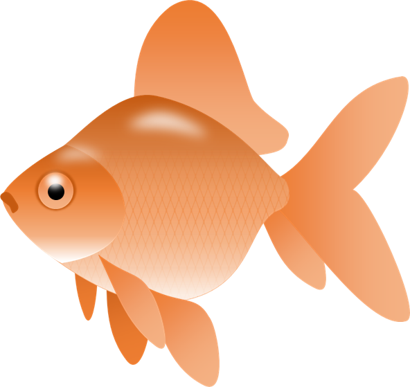 Image of goldfish gold. Fish clipart adorable