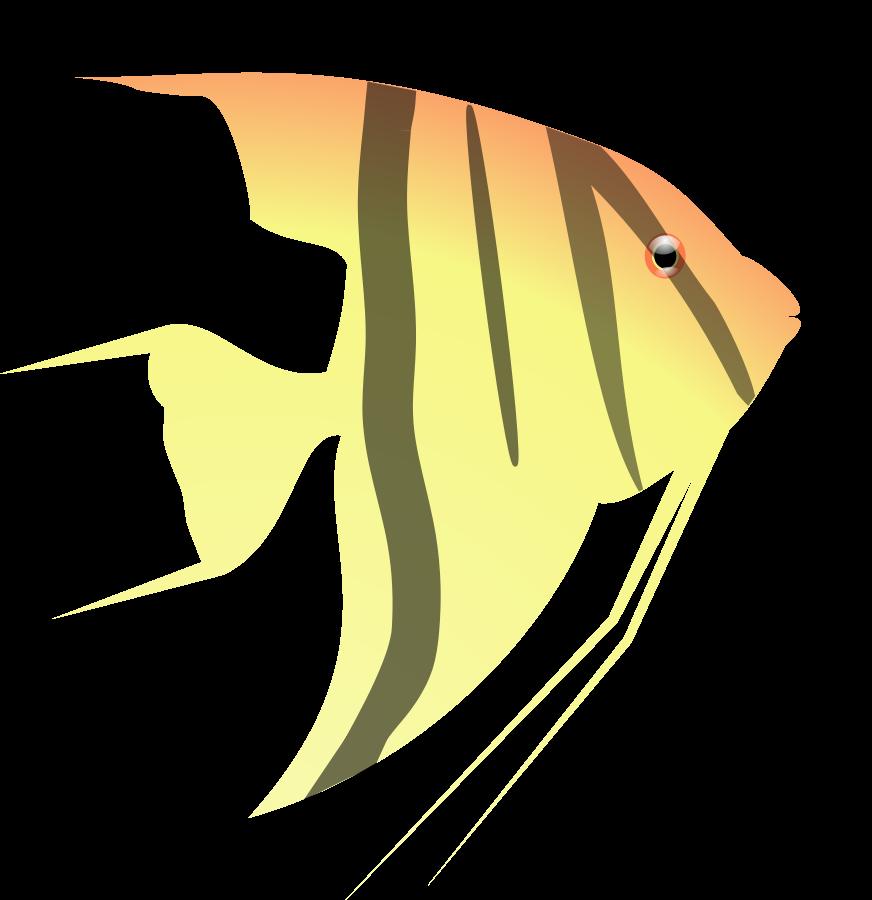 Nemo clipart animated. Free fish vector download