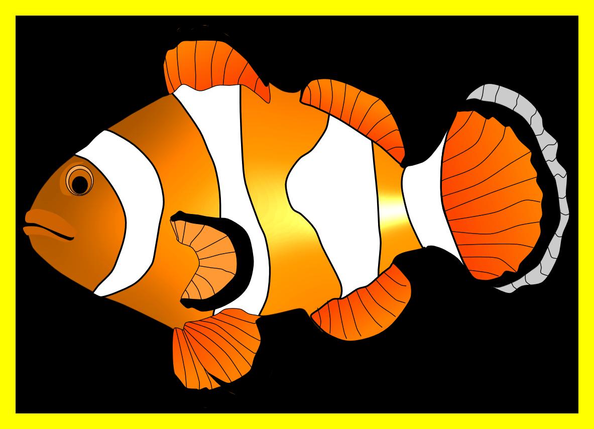 Marvelous clip art of. Clipart fish orange