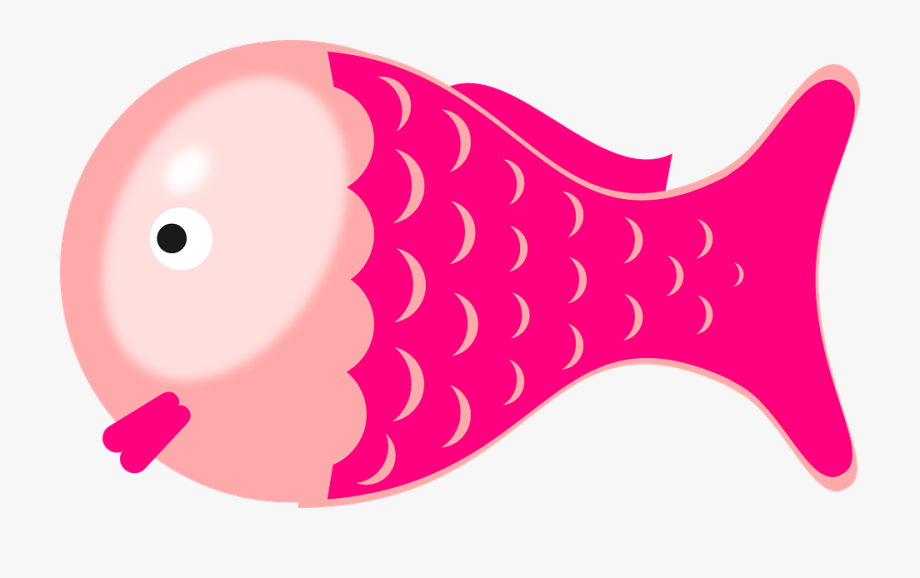Fish clipart pink. Marine face png