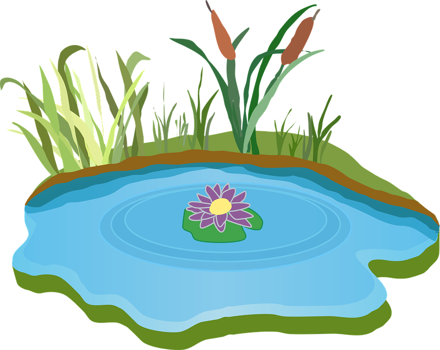 Imagem gratis no pixabay. Lake clipart pond life