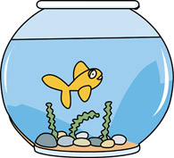 Fishbowl clipart home. Search results for swim