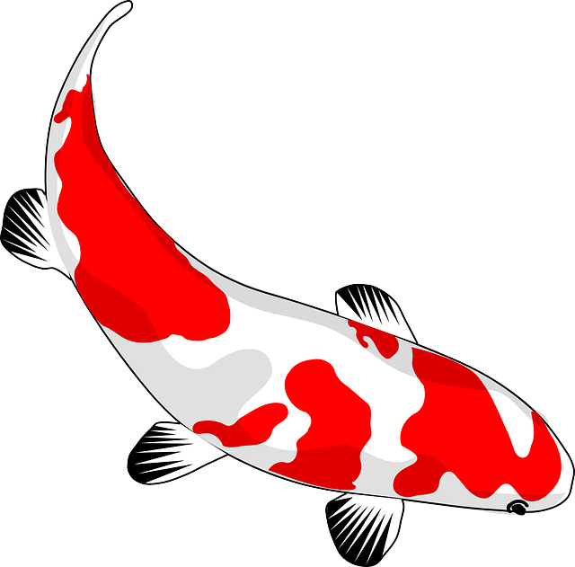 Free image on pixabay. Goldfish clipart 2 fish