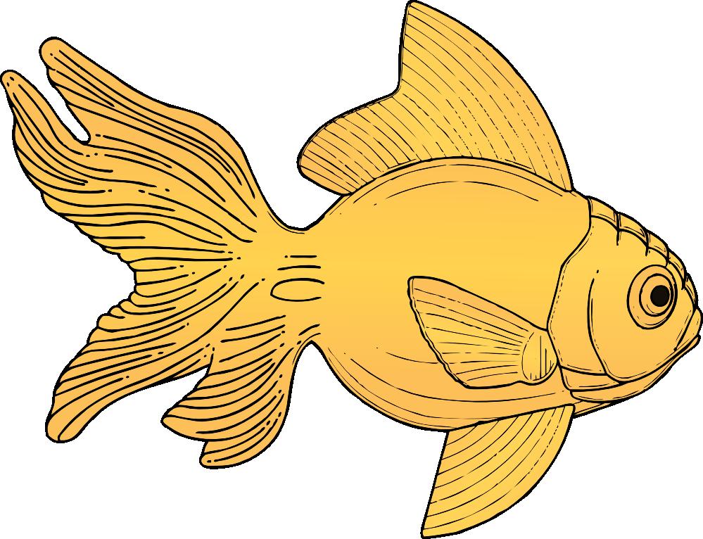 Clipartist net pxpng k. Goldfish clipart golden fish