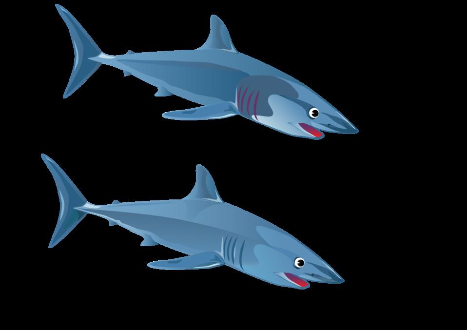 Clipart fish shark. Public domain clip art
