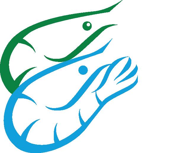 tuna clipart shrimp #146923654