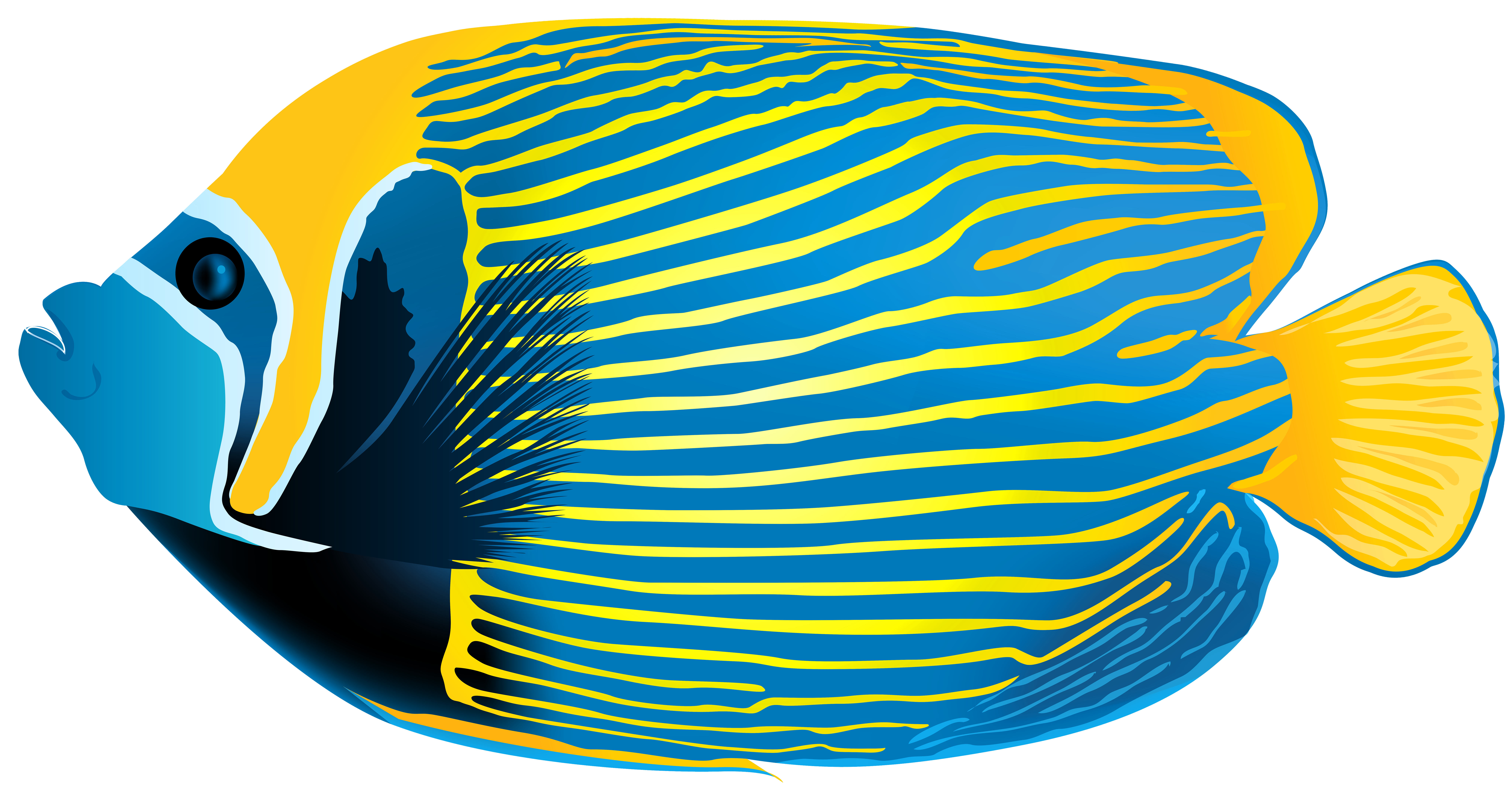collection of angel. Clipart fish side view