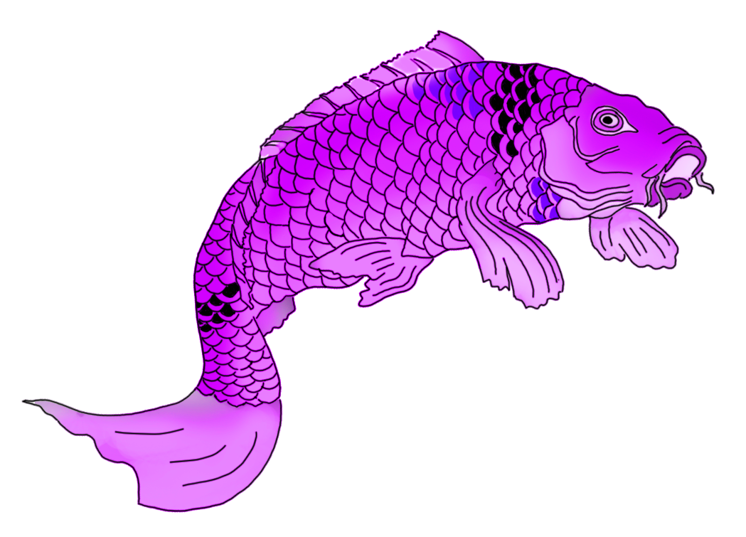 Japanese clipart fish. Colorful koi drawings purple