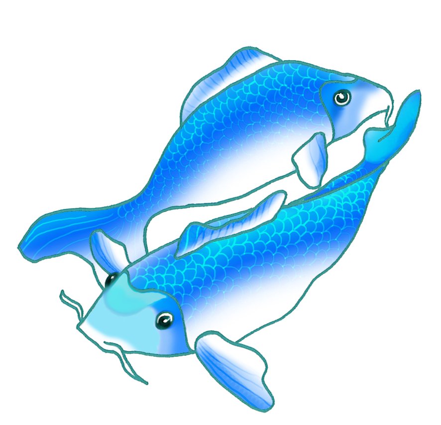 Fish clipart blue. Colorful koi drawings two