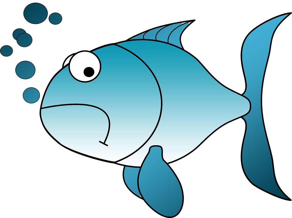 Collection of free fished. Fishing clipart watercolor