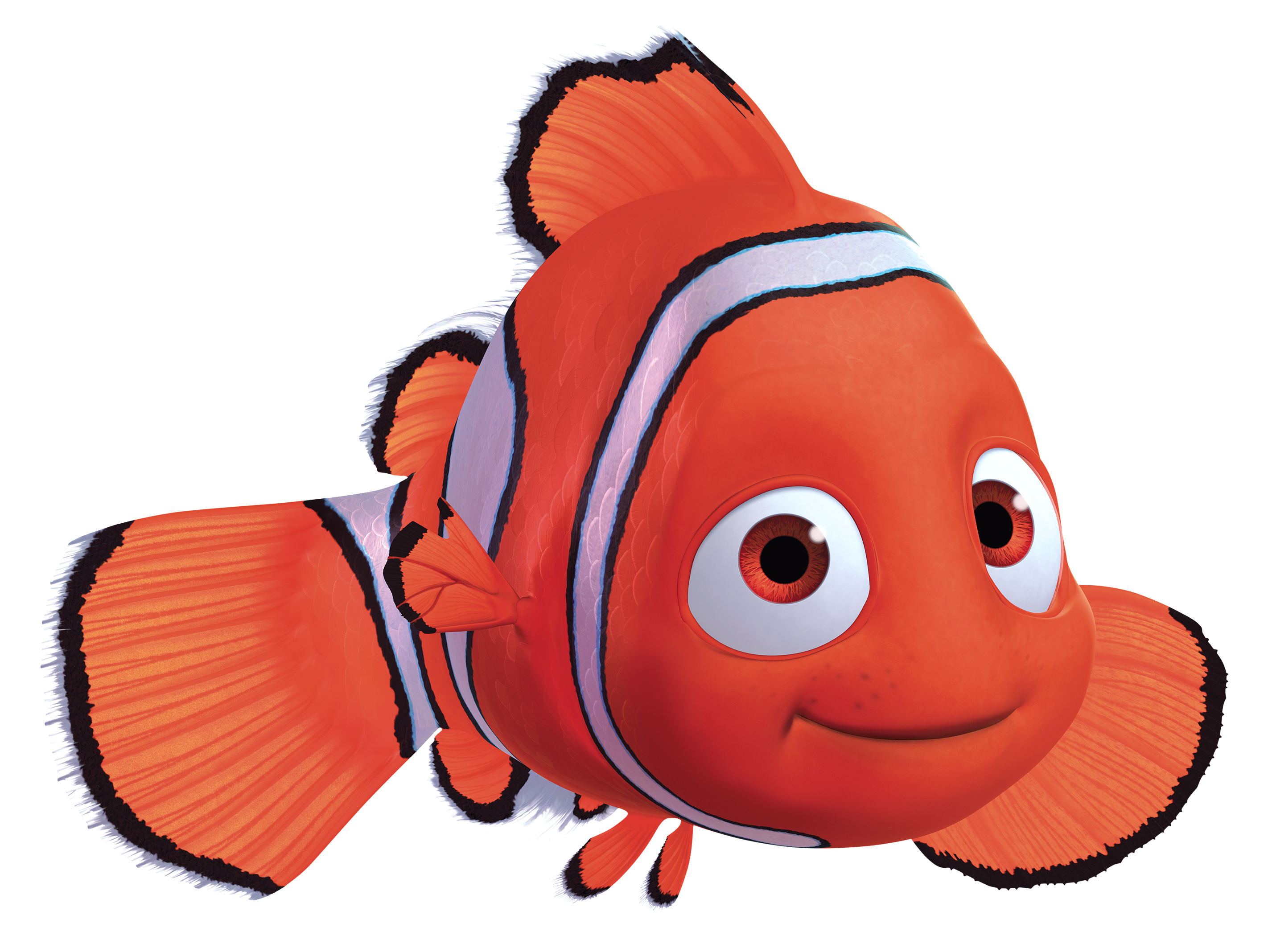 Nemo pinterest disney wiki. Dory clipart movie