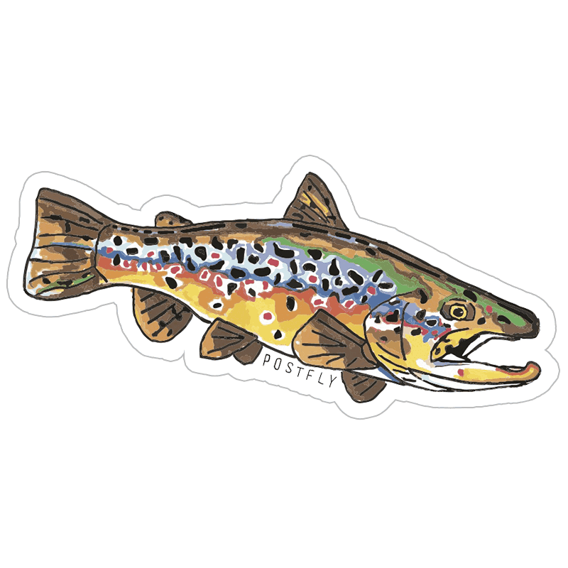 Postfly artsy fly fishing. Trout clipart wide mouth bass