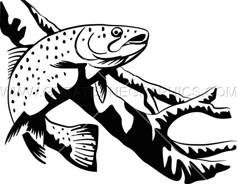 Drawing black and white. Salmon clipart cutthroat trout