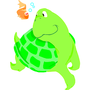 Fish clipart turtle. Watching cliparts of