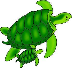 Cute sea clip art. Fish clipart turtle