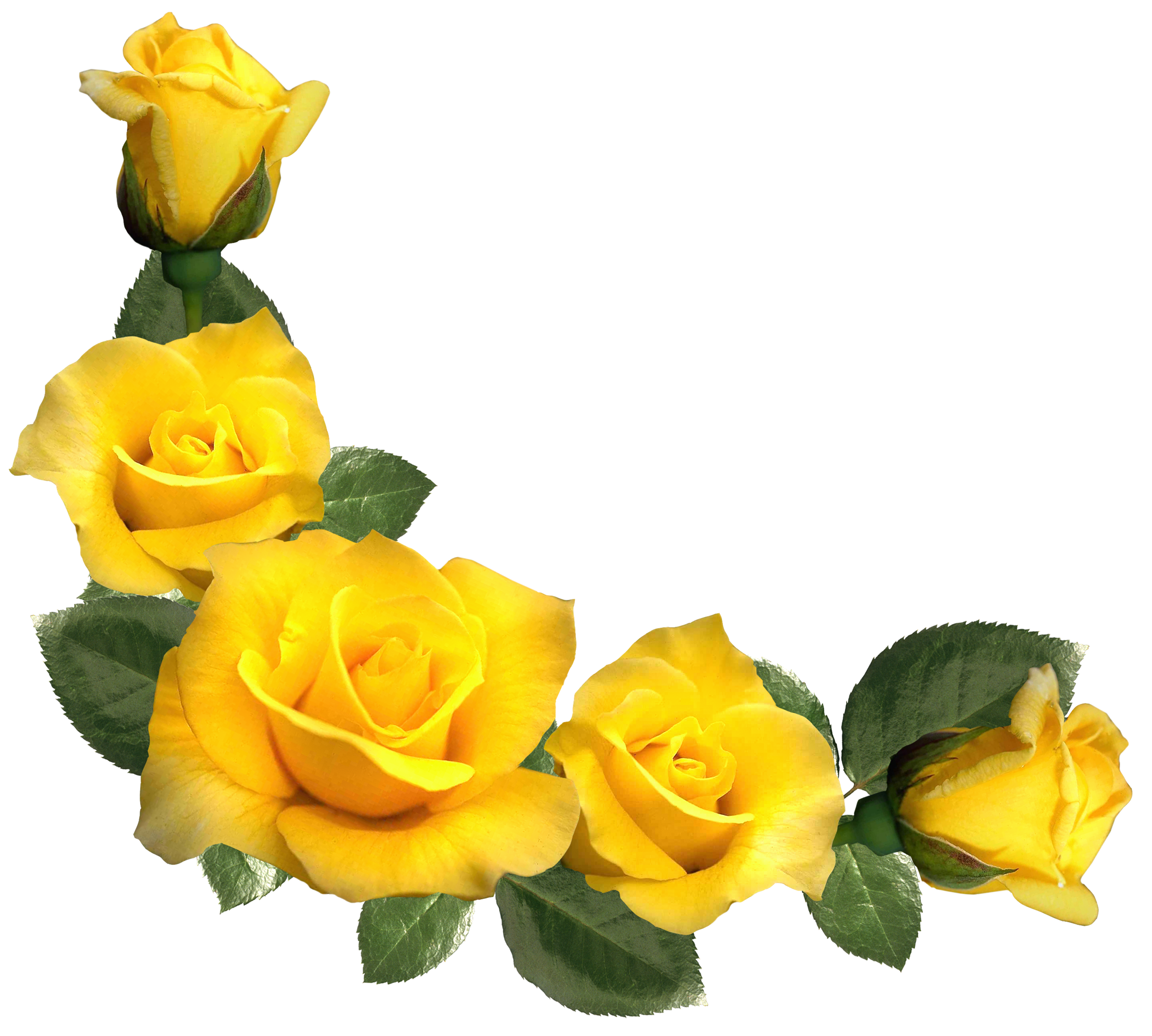 Beautiful yellow decor png. Clipart roses aesthetic