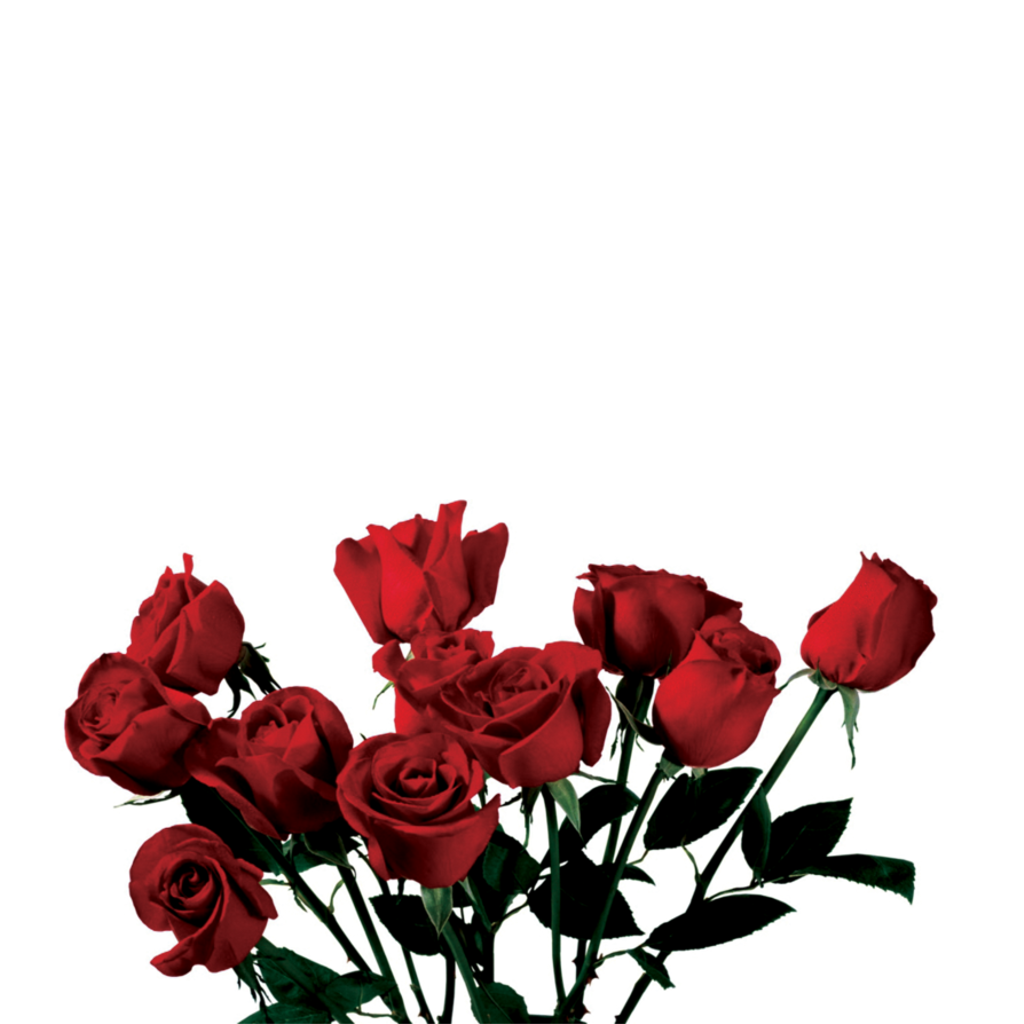 Clipart roses aesthetic. Tumblr tumblraesthetic aesthetictumblr