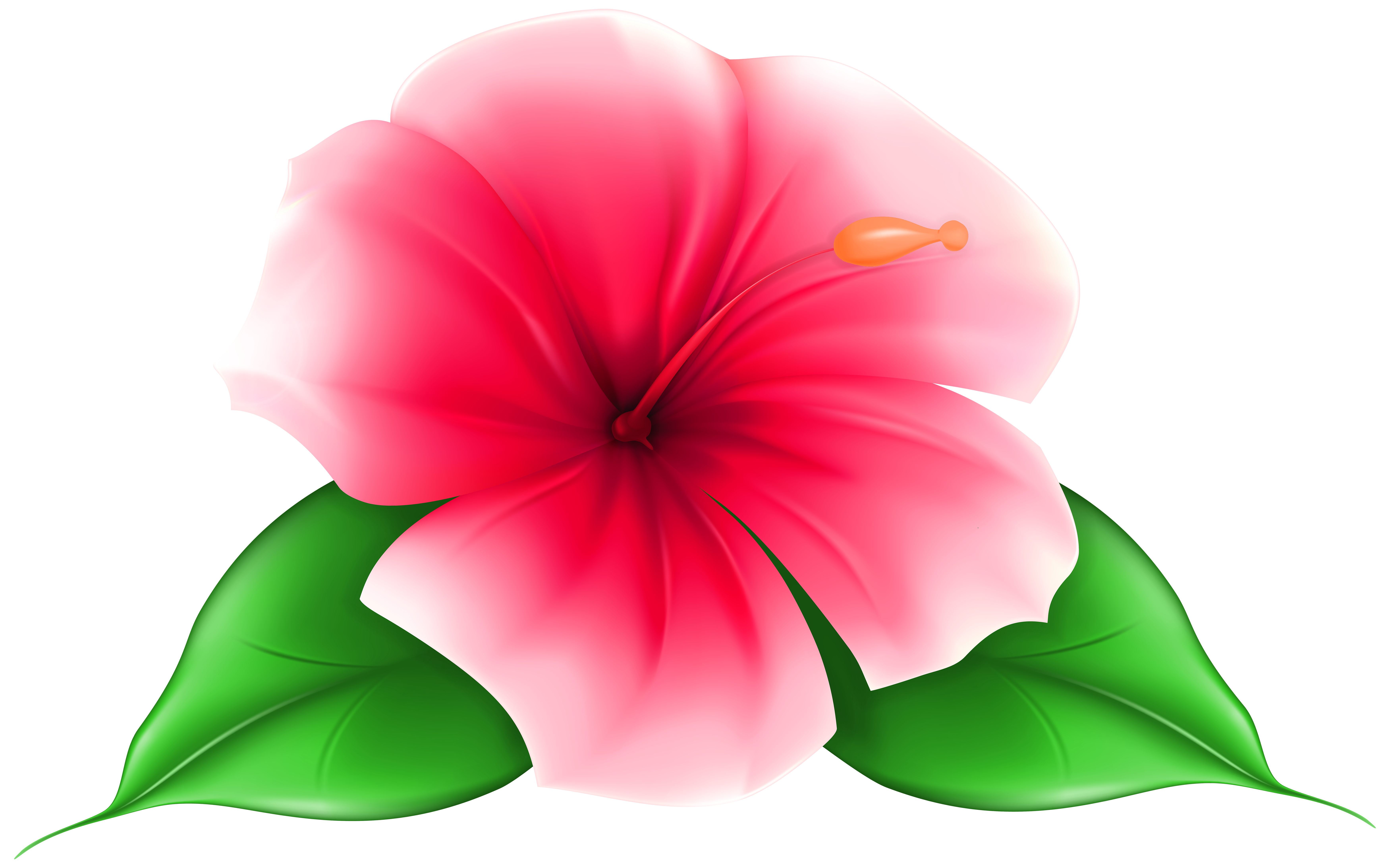 Art at getdrawings com. Flower clipart png