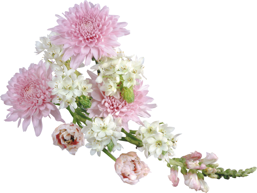 Transparent soft clipart gallery. Flower arrangement png