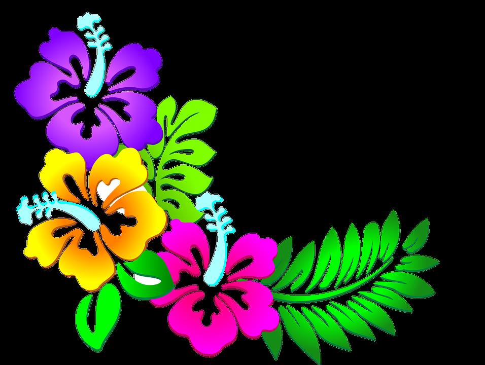 Flower clipart beach. Imagen relacionada cameo pinterest