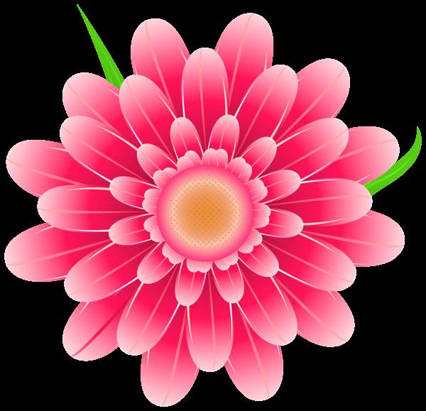 Daisies clipart flores. Transparent pink flower png