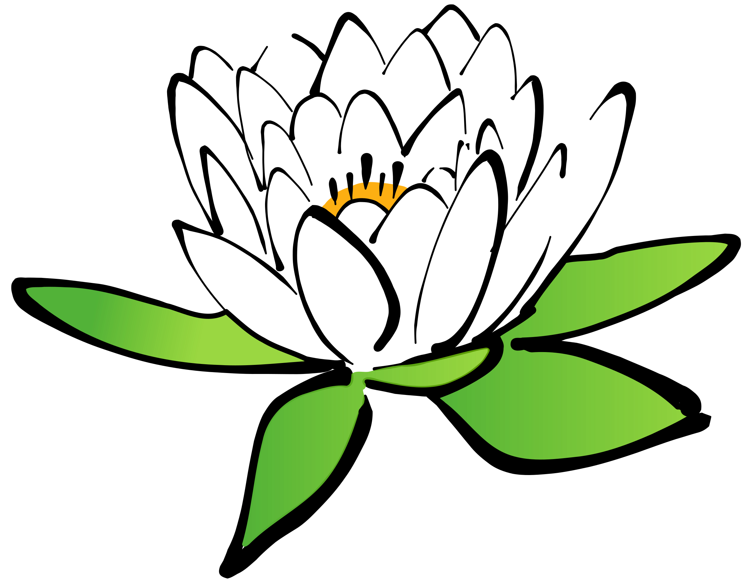 Lotus clipart olu. Blue flower nelum pencil
