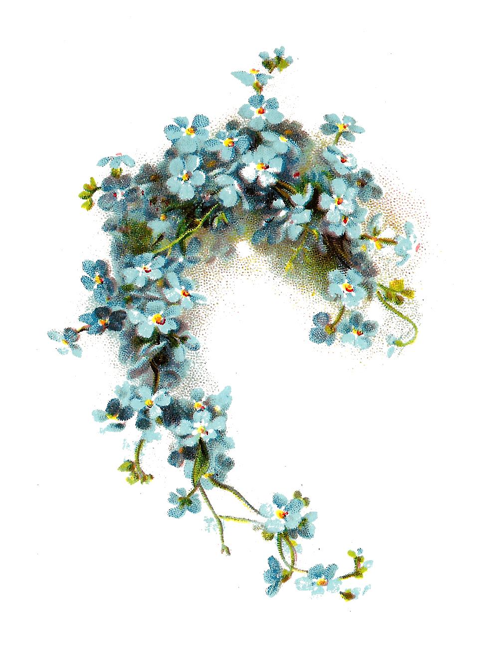 Image clip art blue. Flower graphic png