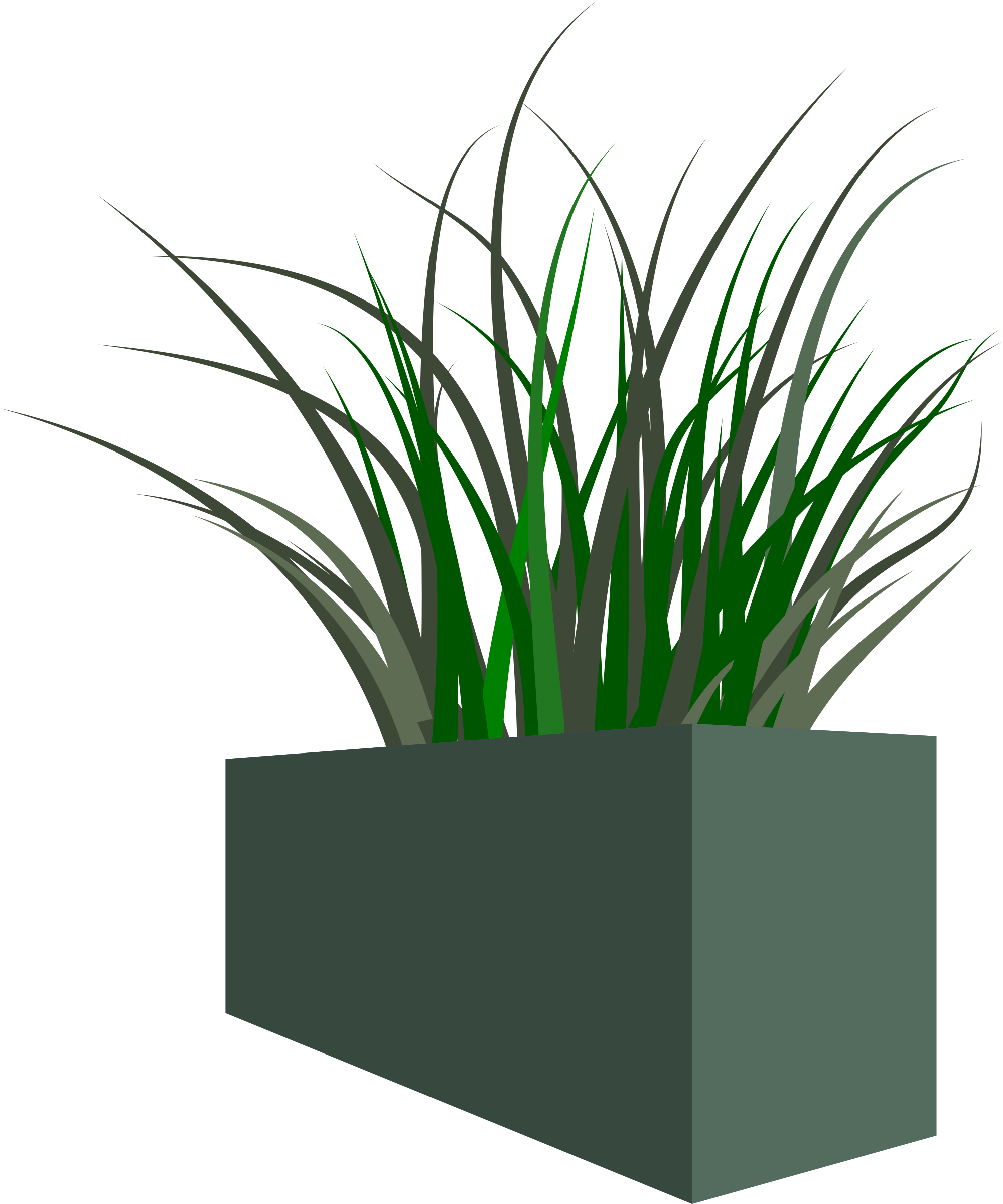 Grass in square big. Flower clipart planter