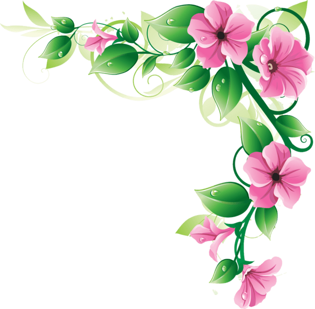 Corner frame png. Flowers transparent stickpng download
