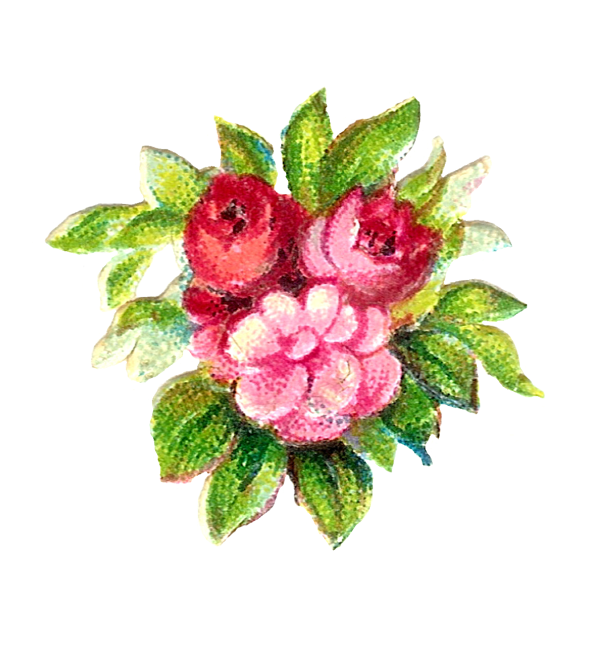 Floral clipart rustic flower. Judy scott jes on