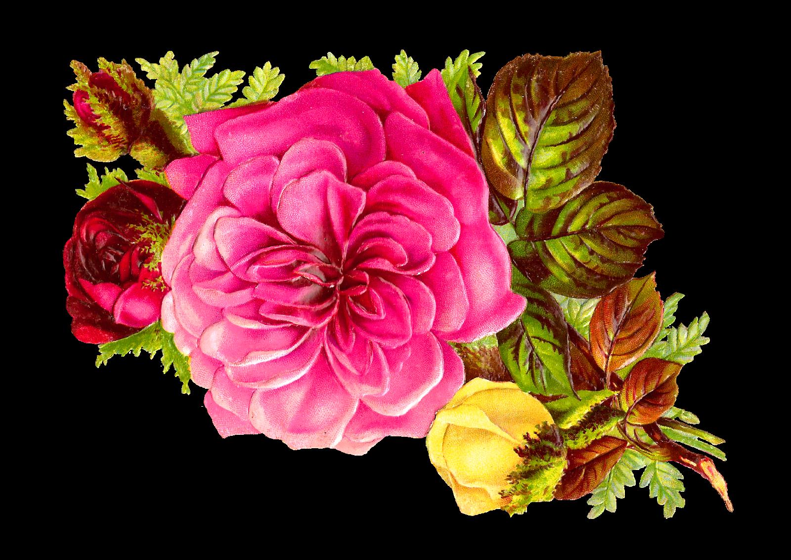 Flower clipart digital. Antique images rose bouquet