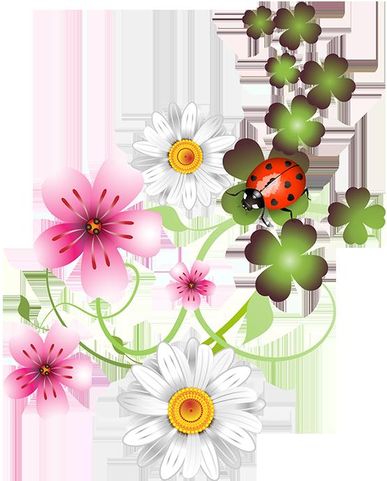Clothes clipart floral. Fleurs flores flowers bloemen