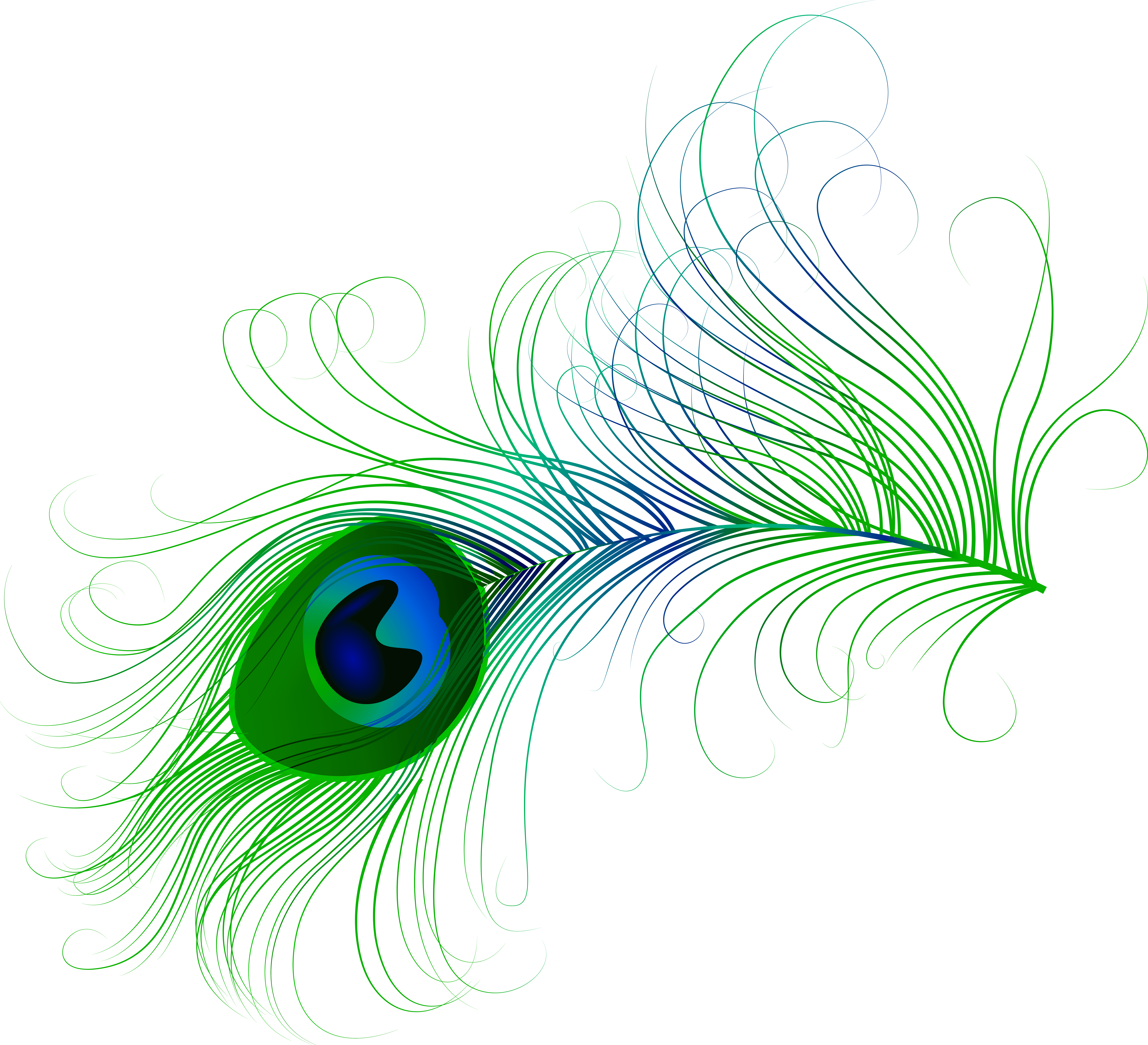Png clip art image. Flutes clipart peacock feather