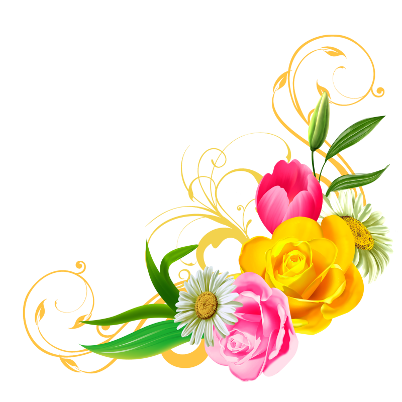 Clipart flowers camera. Tubes fleurs varies png