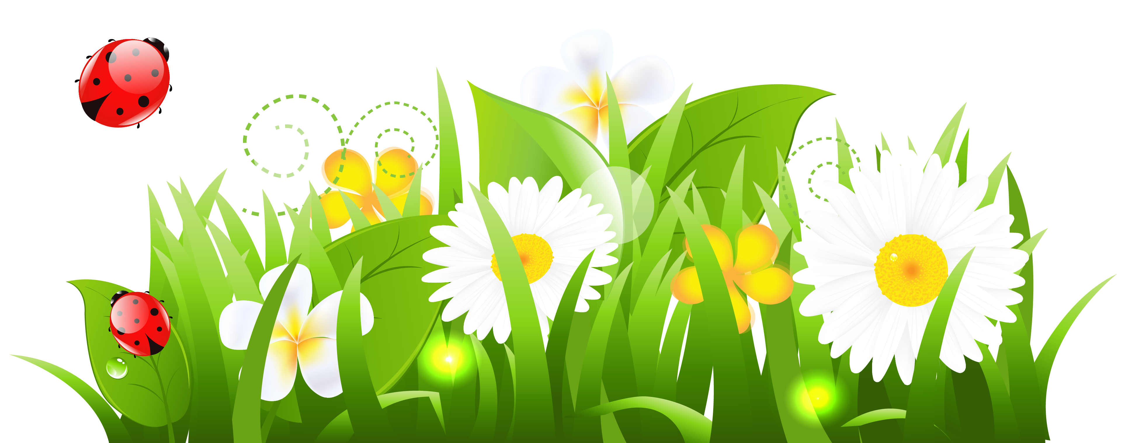 collection of flower. Ladybugs clipart kid
