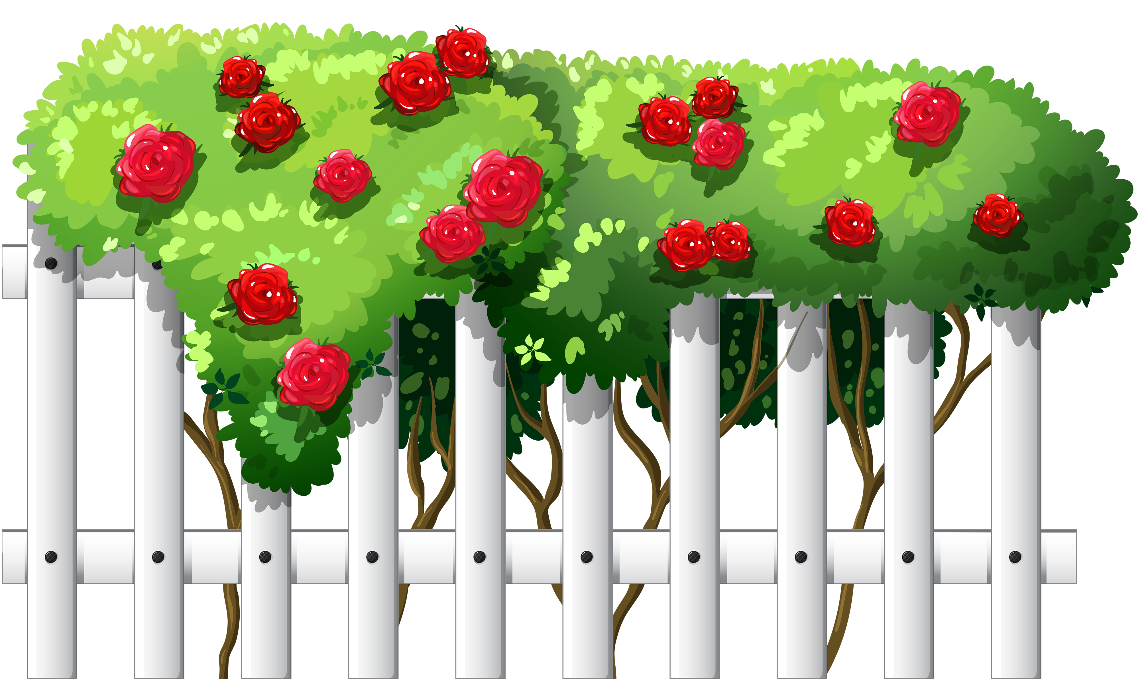 Clipart flower fence. White with roses png