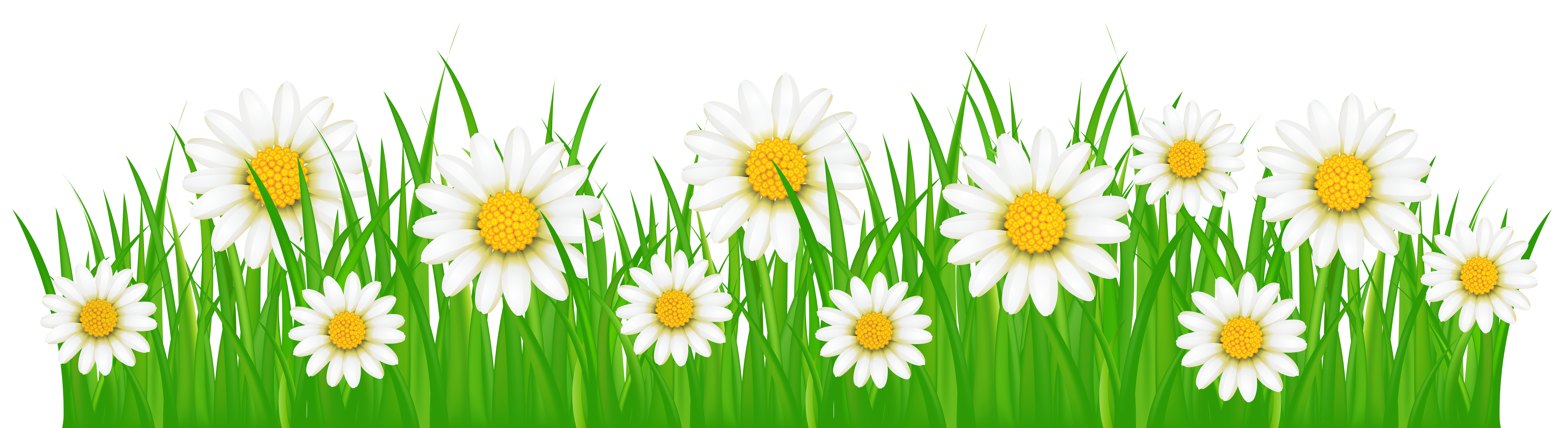Clipart grass plains.  collection of flower