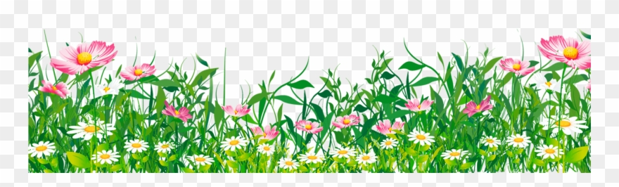 Clipart grass flower. With png download pinclipart