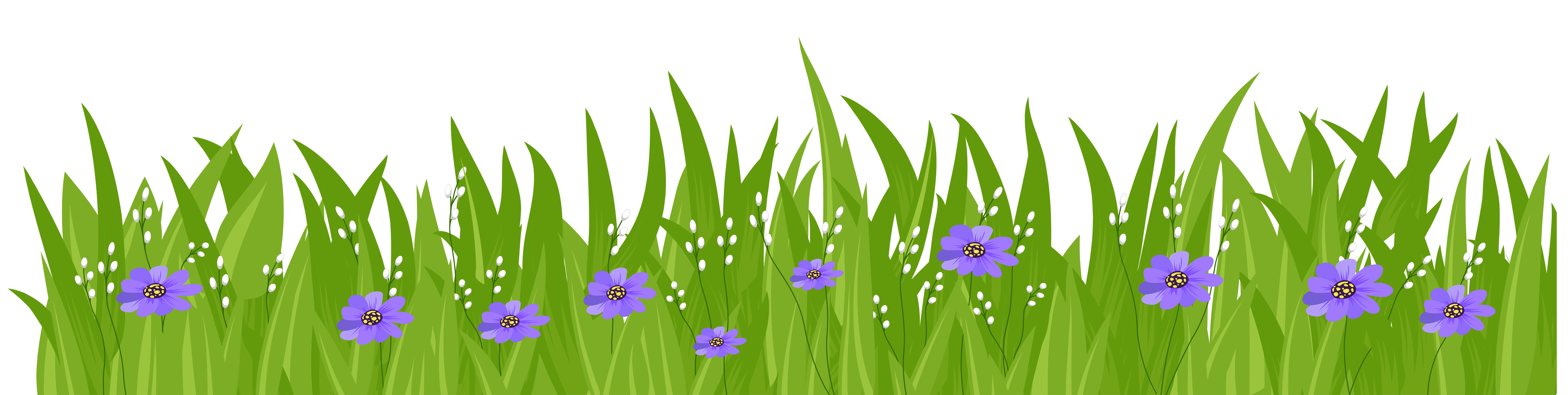 With purple flowers transparent. Flower clipart grass
