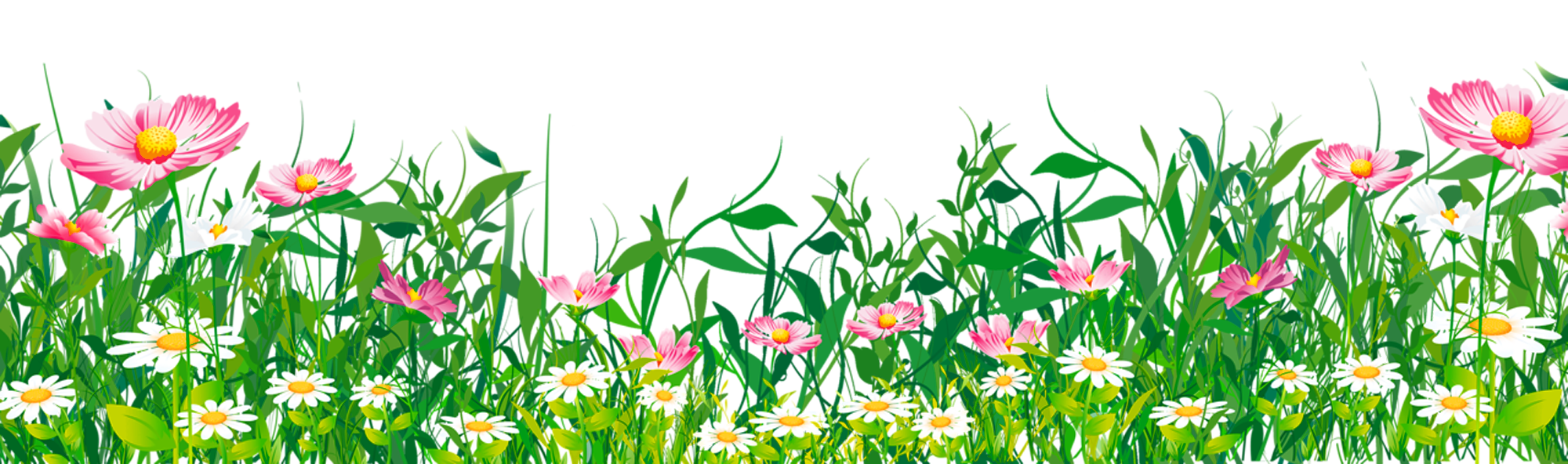 Grass with flowers png. Outside clipart field flower